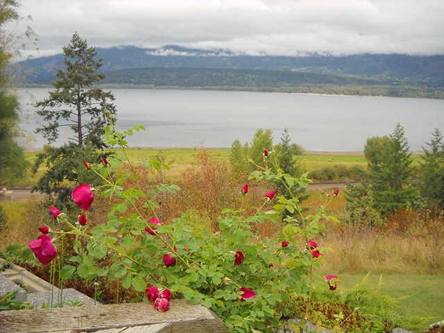 Salmon Arm View from Patio Diana Walker Photo Canada Sunrider
