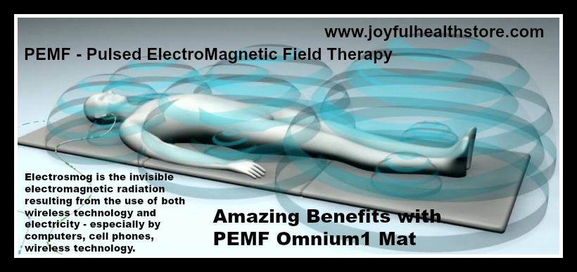 PEMF ElectroSmog Pulsed ElectroMagnetic Field Salmon Arm Canada