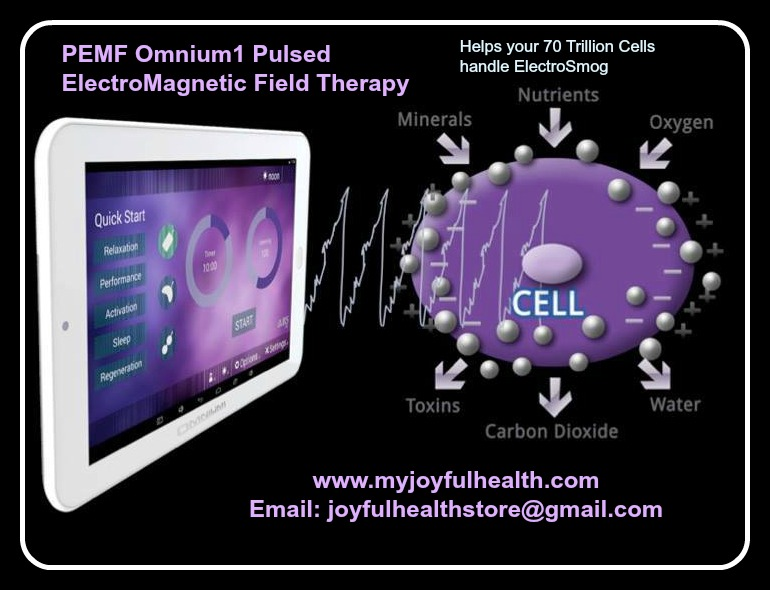 PEMF ElectroSmog Pulsed ElectroMagnetic Field Therapy